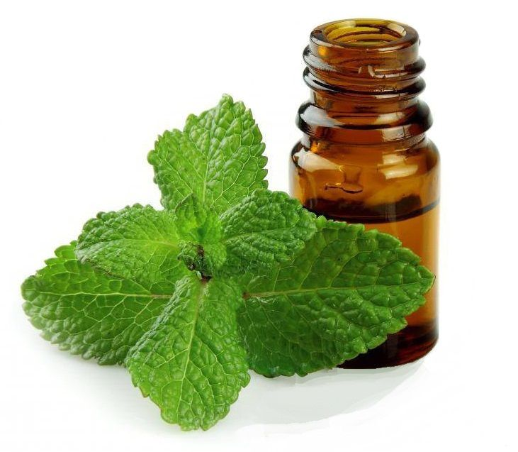 hinh-tinh-dau-bac-ha-nguyen-chat-(peppermint-essential-oil)