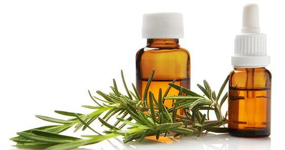 hinh-tinh-dau-huong-thao-nguyen-chat-(rosemary-essential-oil)